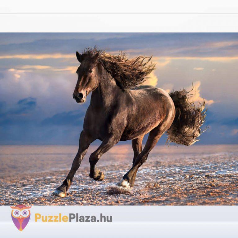 1000 db-os szabad ló puzzle (szabadság). Clementoni 39420 kirakott kép