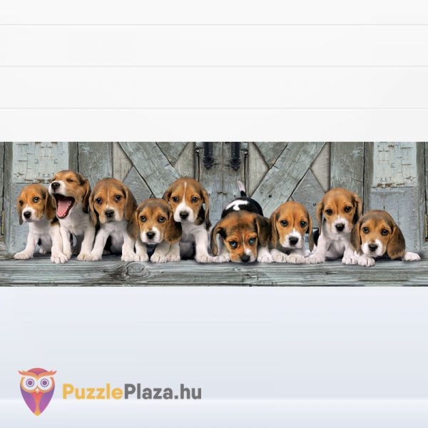 1000 darabos Beagle kölyök kutya panoráma puzzle - Clementoni 39435 - kirakott kép