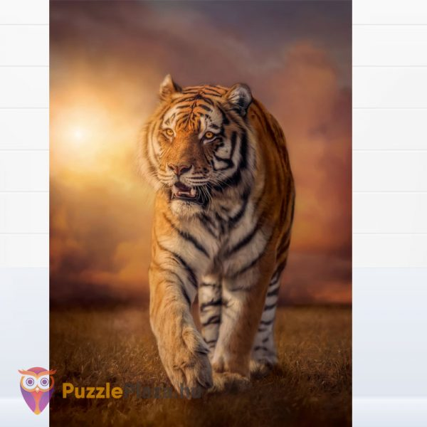 1500 darabos tigris puzzle, Clementoni - High Quality Collection 31806 kirakott kép