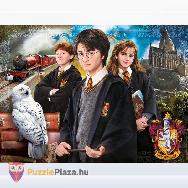 1000 darabos Harry Potter puzzle kirakott képe - Clementoni 61882