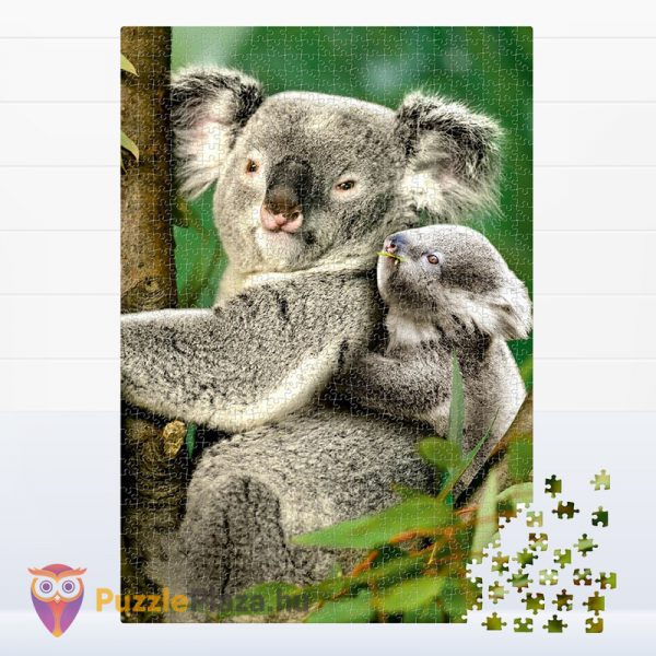 1000 darabos Deico Allatok (76816) - Koala a kicsinyével kirakott képe