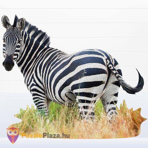 Poszer méretű 1000 darabos zebra forma puzzle kirakva - Wow Toys