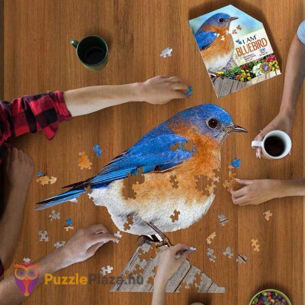 300 darabos különleges kékmadár kirakózás közben - Wow Toys